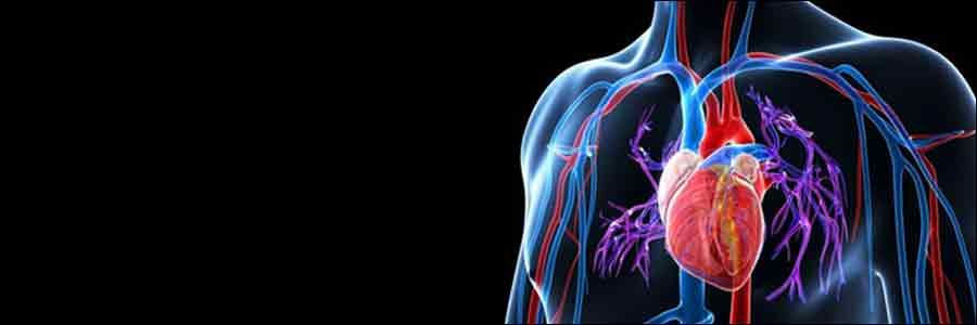 Cure-Hypertension